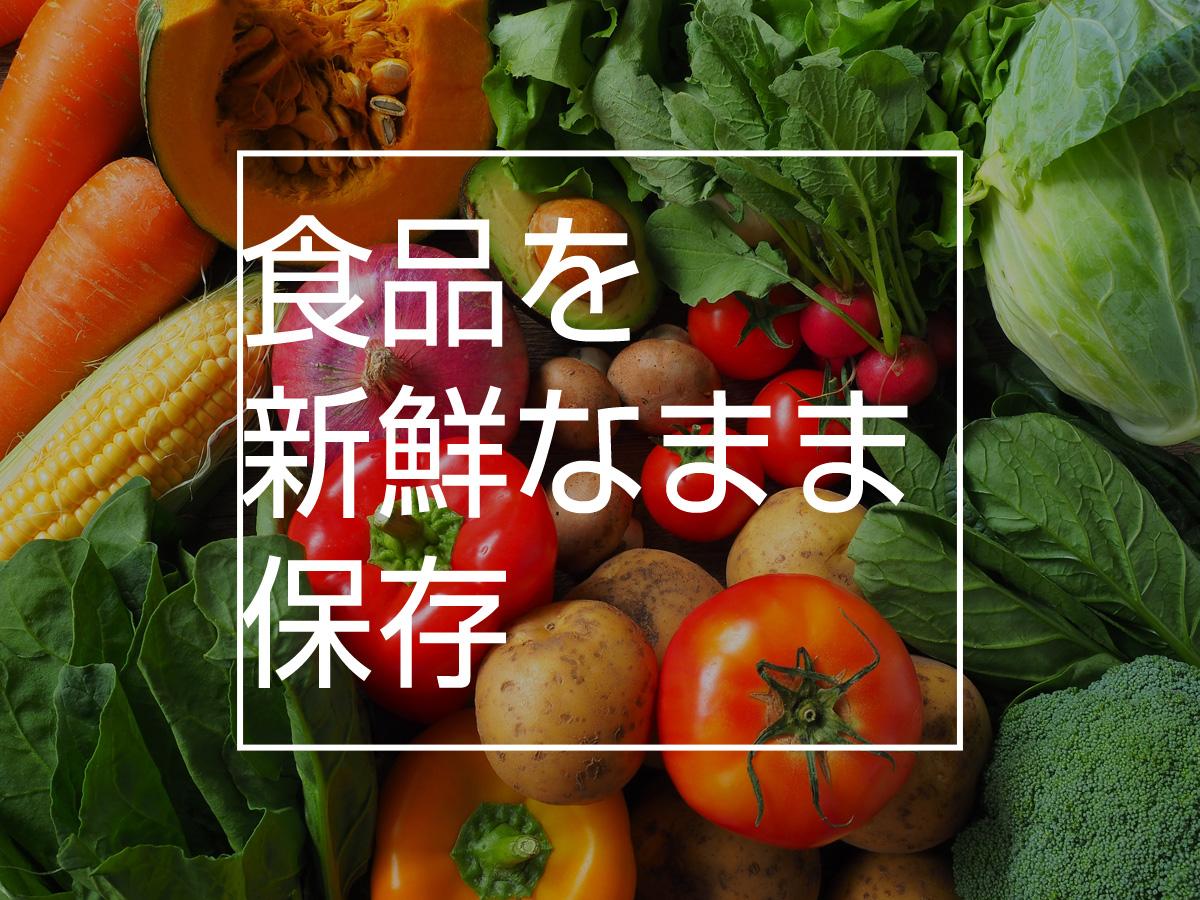 食品を新鮮なまま保存
